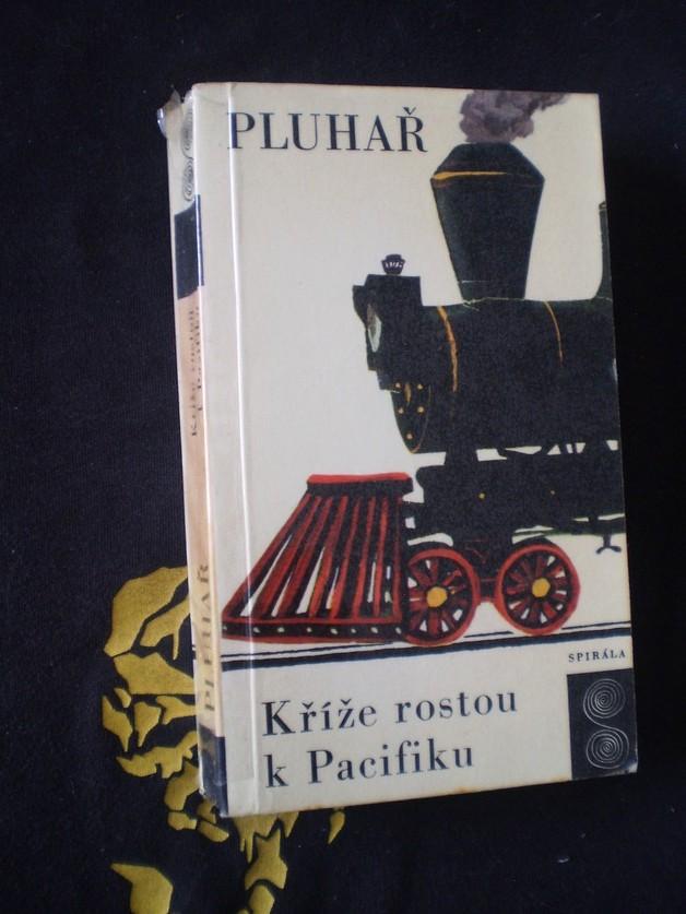 Kříže rostou k Pacifiku - Zdeněk Pluhař