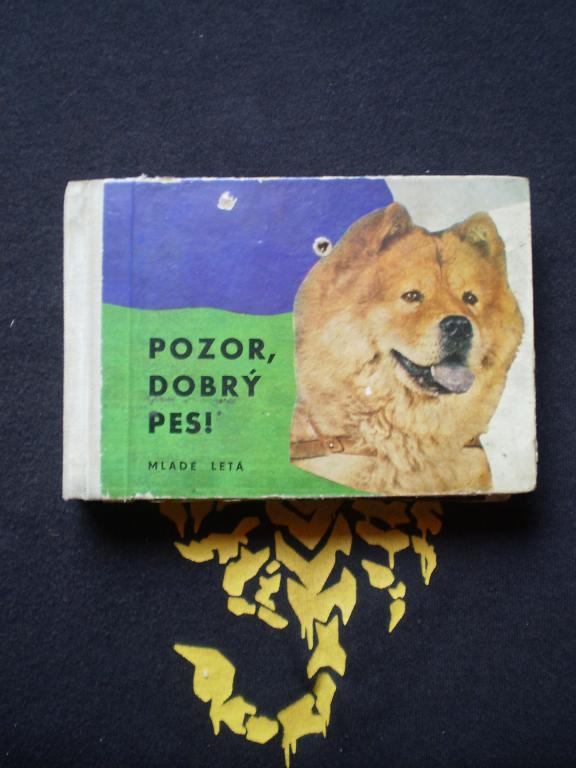 POZOR, DOBRÝ PES - Ján Duračinský