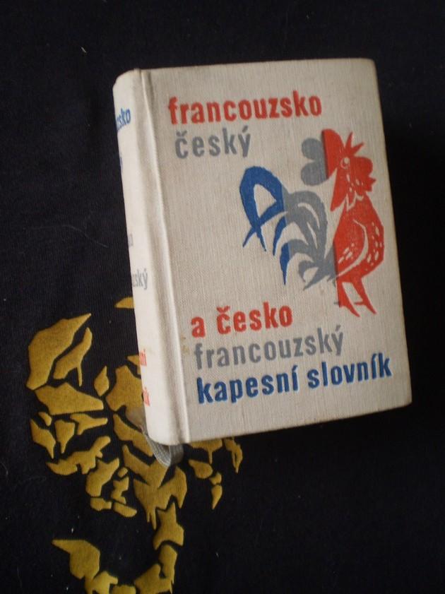 FRANCOUZSKO ČESKÝ / ČESKO FRANCOUZSKÝ KAPESNÍ SLOVNÍK