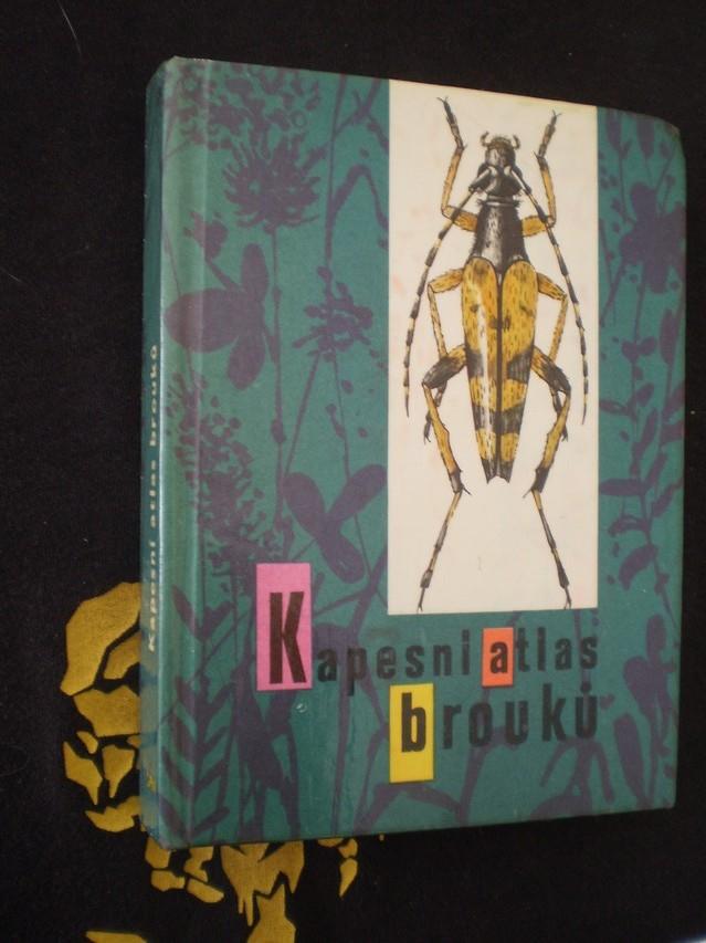 Kapesní atlas brouků
