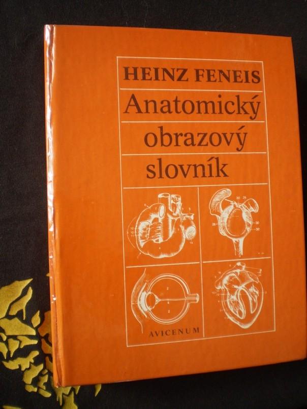 Anatomický obrazový slovník