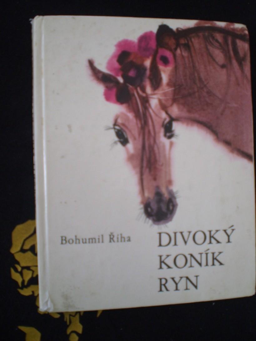 DIVOKÝ KONÍK RYN - Říha, Bohumil