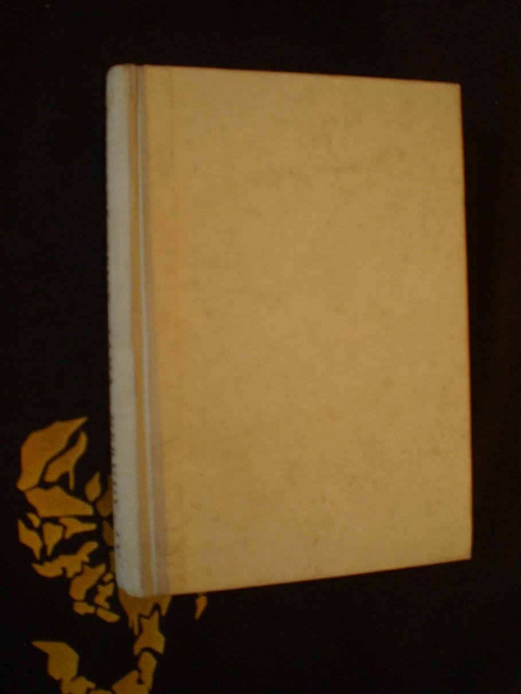 Vybrané spisy Jana Nerudy IV - Výbor ze spisů kritických a smíšených